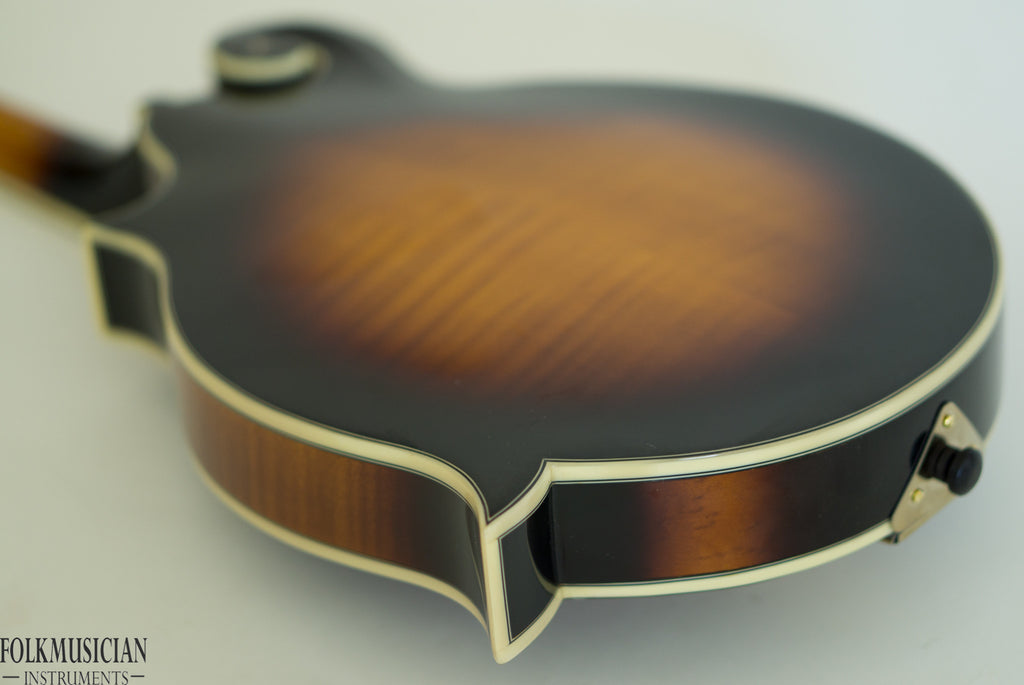The Loar Mandolin LM-700 - BLEM