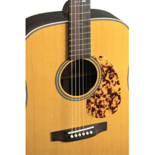 Blueridge BR-160 Acoustic Guitar
