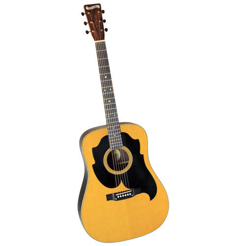 Larry Spark Blueridge Guitar BR-3060