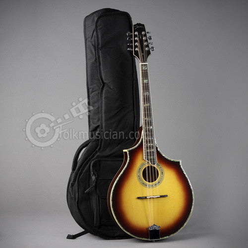 Case for Johnson MA-550 Octave Mandolin