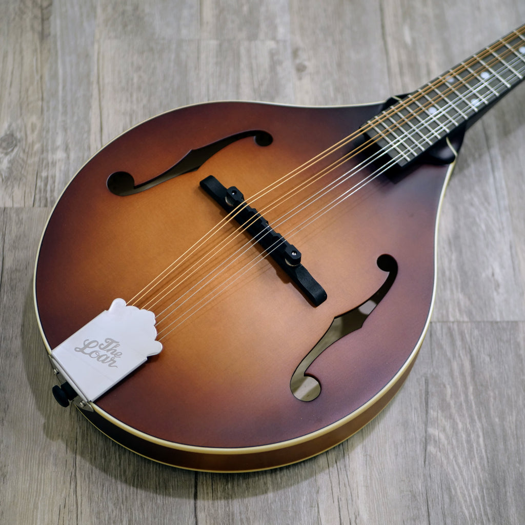 The Loar LM-110 Honey Creek Mandolin