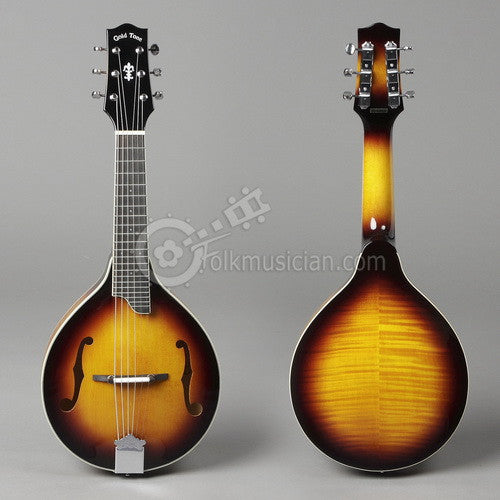 Gold Tone 6 String Mandolin Guitar