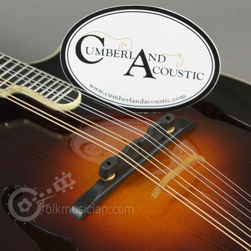 The Loar LM-700 Mandolin CA Bridge