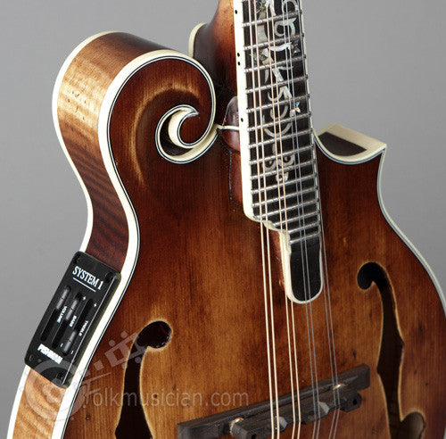 Michael Kelly Legacy Dragonfly Electric Mandolin AVS