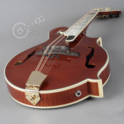 Michael Kelly Dragonfly Electric Mandolin