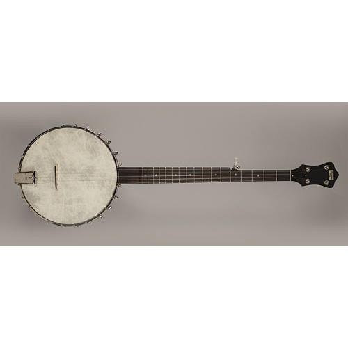 Recording King Old Time Open Back Banjo