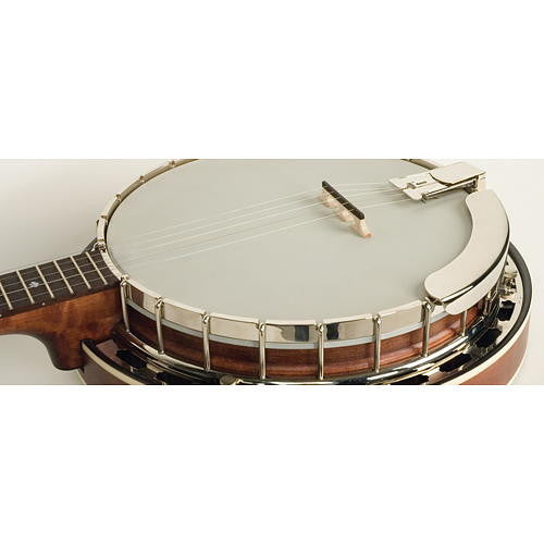 Recording King RK-R25 Banjo