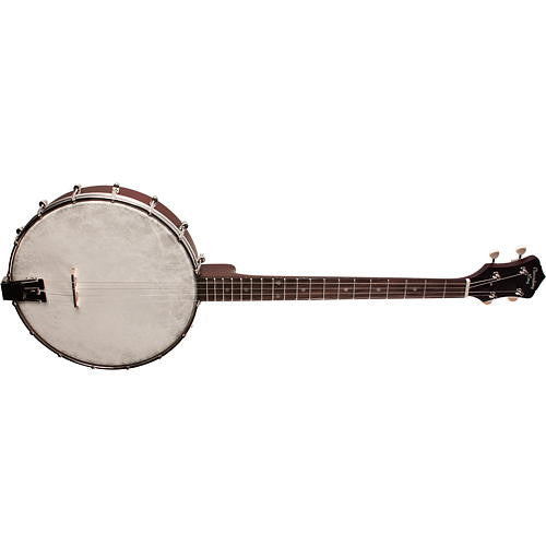 Recording King Tenor Banjo Dirty 302
