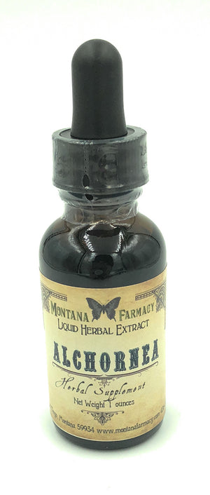 Alchornea Cordifolia Natural Extract Tincture 16 oz Apothecary Bottle