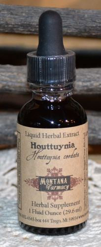 Houttuynia Natural Extract Tincture Case of 12