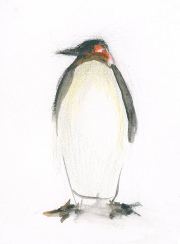 Penguin by CLM