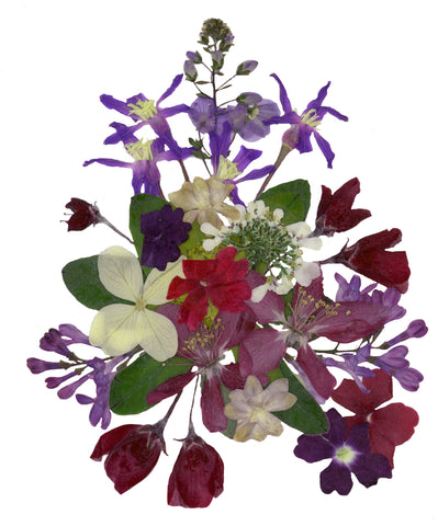Fine Art Print: Pressed Bouquet by SNA