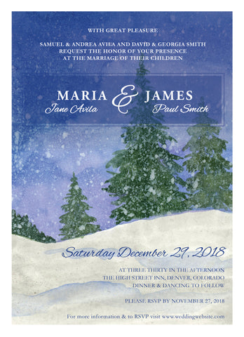 Wedding Invitation: Snow Storm by VEC
