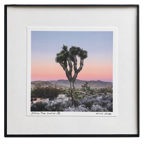 "8x8"" Joshua Tree Sunrise II"
