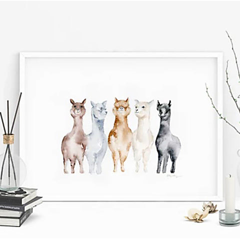 United Colors of Alpacas Print