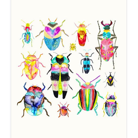 Beetle Collection No.1 Print