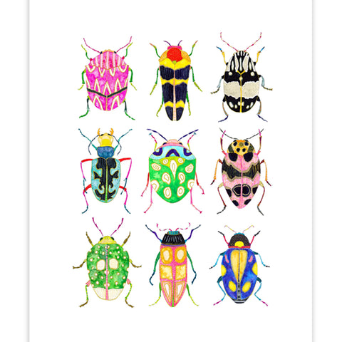 Beetle Collection No.2 Print