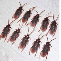 Paradise Treasures (TM)(One Dozen 12)- Fake Roaches High Quality Prank Novelty Cockroach Bugs Look Realistic