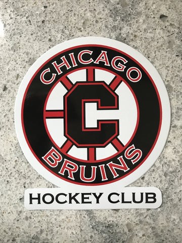 Bruins Car Sticker or Magnet