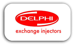 delphi exchange injectors