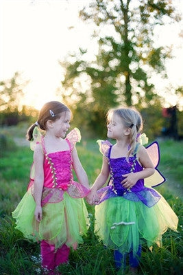 Great Pretenders Rosie Raspberry Fairy Dress with Wings Ages 4-6 - Toyabella.com
