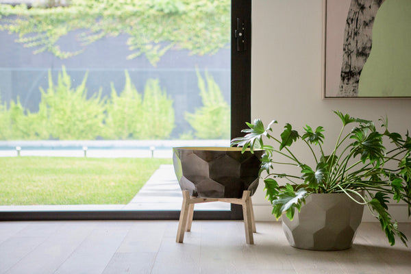 The 7 benefits of indoor plants that you've probably never thought about