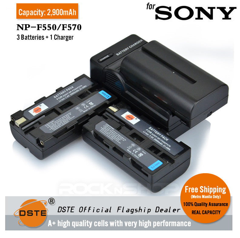 DSTE NP-F550 2900mAh Battery and Charger for Sony TRV81