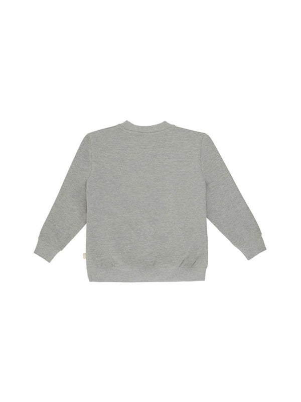 Soft Gallery sweatshirt grå