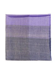 Indian pashmina shawl cachemire