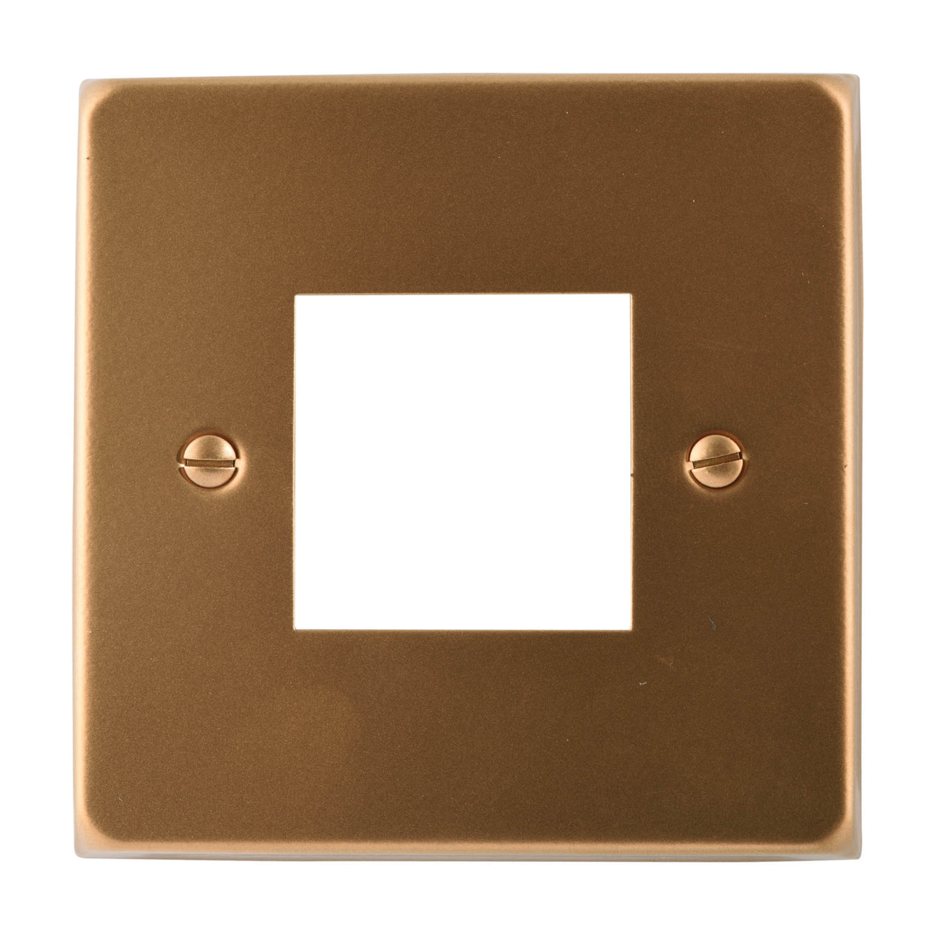 ElekTek Light Switch Conversion Cover Plate Double Victorian - Buy It Better Pink