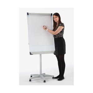 Person next to Flip Chart