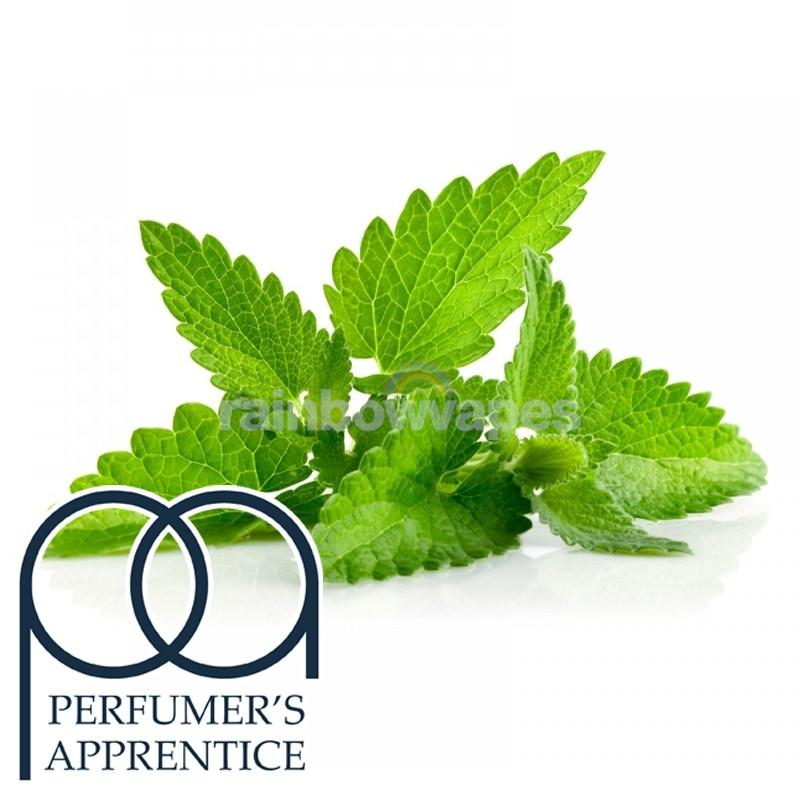 Flavour Apprentice Spearmint Flavoured Flavour Apprentice Liquid concentrate - rainbowvapes