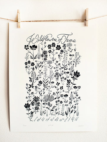 Wildflowers of Texas Poster