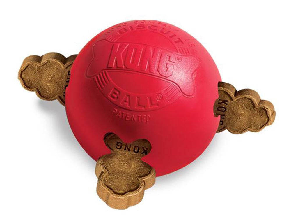 KONG Biscuit Ball Toy