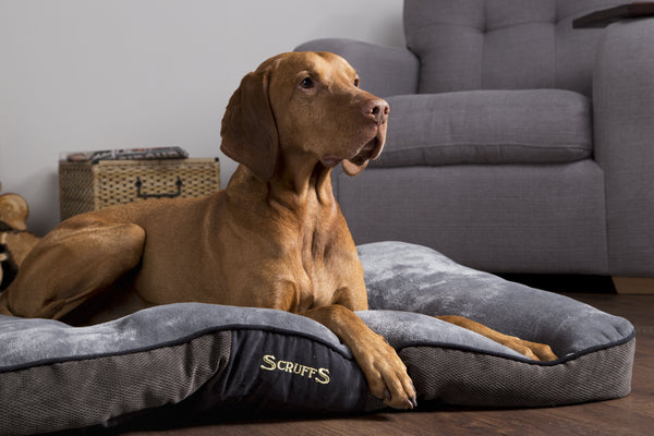 Luxury Chenille Bedding from Scruffs®
