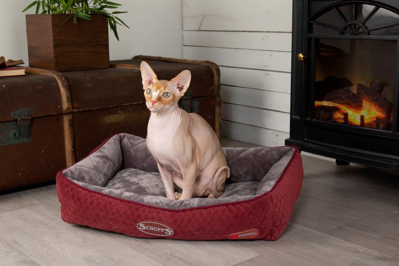 Scruffs Thermal Self-Heating Lounger