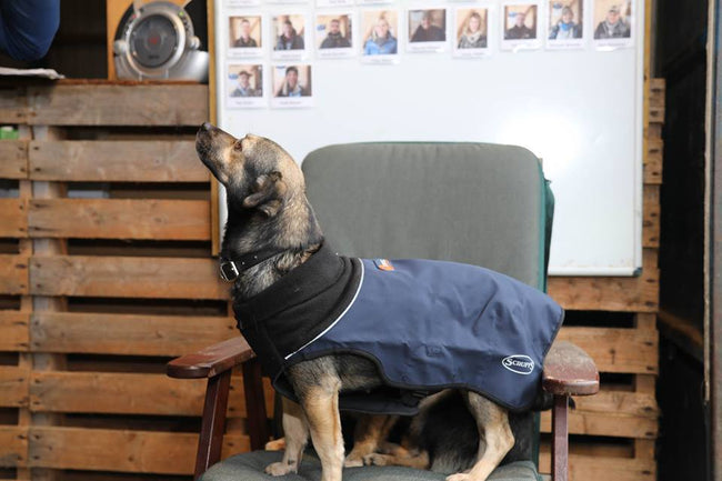 Scruffs® Donate Thermal Jackets to Rescue Centre