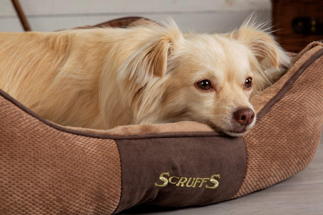 WIN £200 OF PREMIER COTTAGES' VOUCHERS, AND A LUXURY SCRUFFS® DOG BED