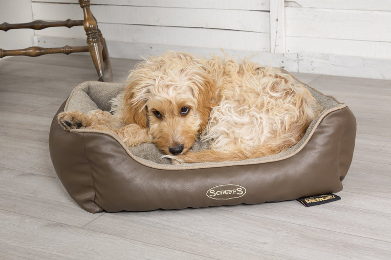 Scruffs® Offer Memory Foam Dog Bed in October Giveaway