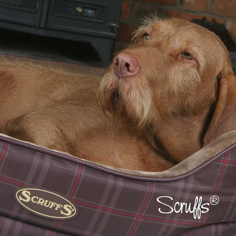 Balmoral Dog Bed Collection