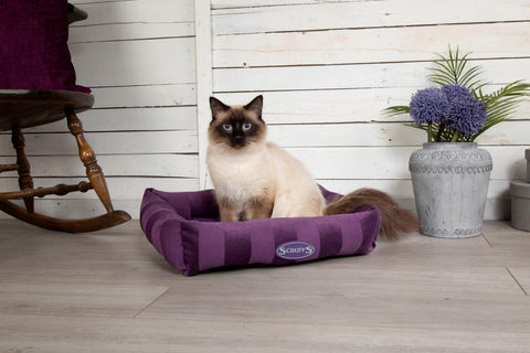 Tramps AristoCat Lounger Plum