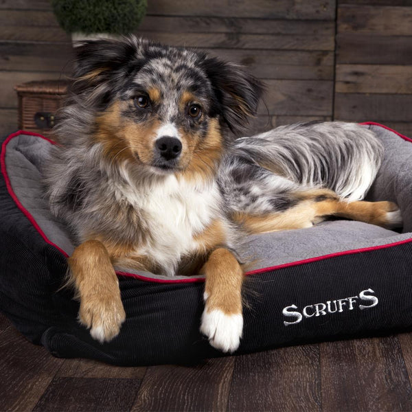 Thermal Box Bed - Black & Grey Dog Bed Scruffs®