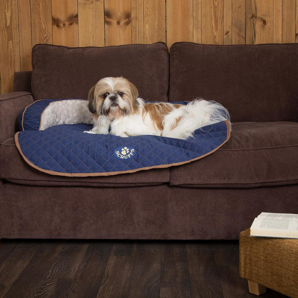 Wilton Sofa Bed - Blue Dog Bed Scruffs®