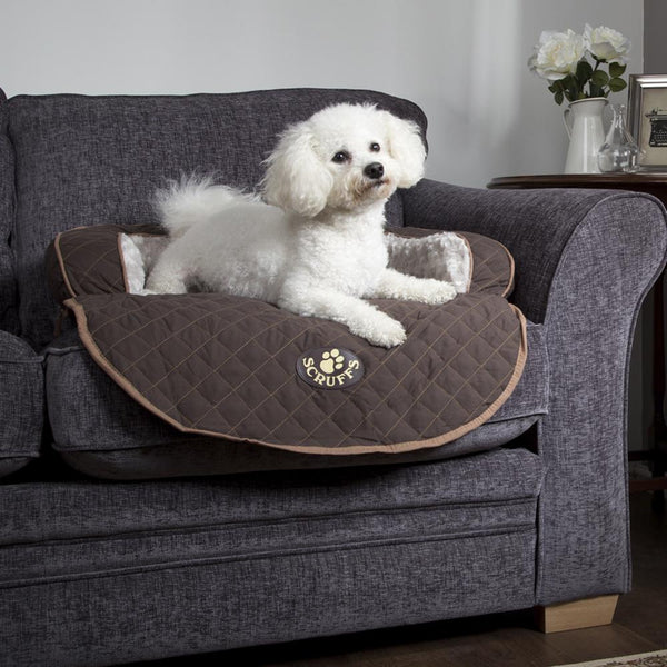 Wilton Sofa Bed - Brown Dog Bed Scruffs®