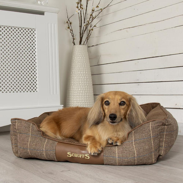 Windsor Box Dog Bed - Chesnut Dog Bed Scruffs®
