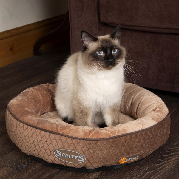 Thermal Ring Cat Bed - Chocolate Brown Cat Bed Scruffs®