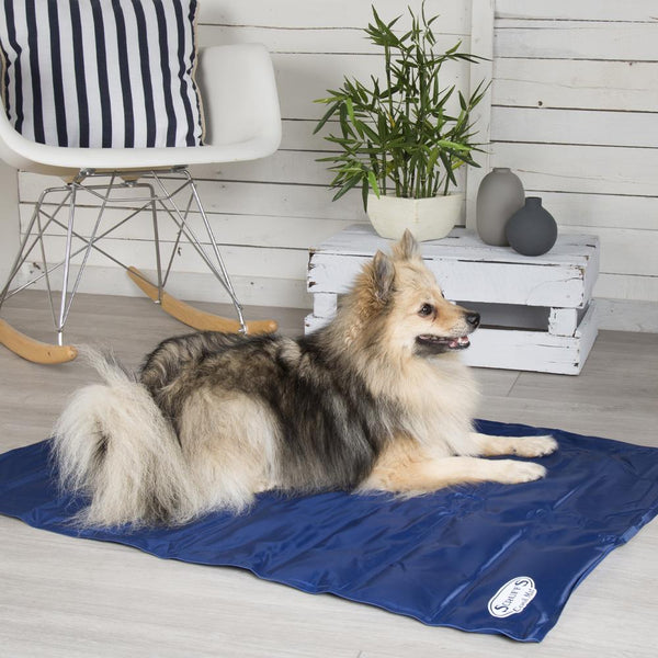Cool Mat - Blue Cooling Mat for dogs by Scruffs®