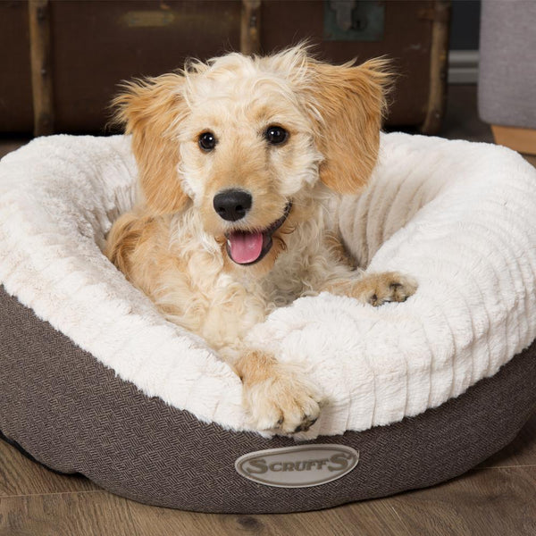 Ellen Donut Bed - Grey Dog Bed Scruffs®