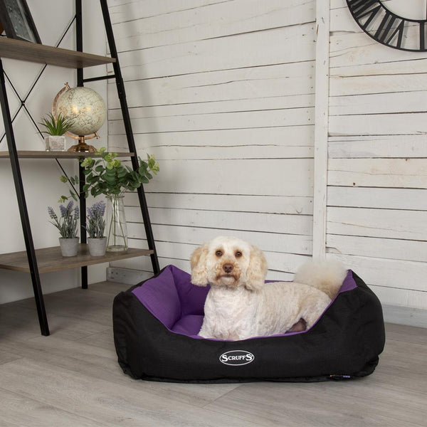Expedition Box Bed - Plum Dog Bed Scruffs®