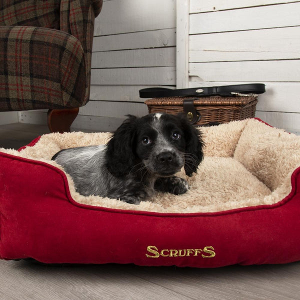 Cosy Soft-Walled Dog Bed - Burgundy Dog Bed Scruffs®